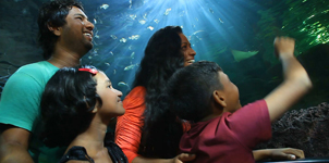 Sri Lankans Underwater Tunnel